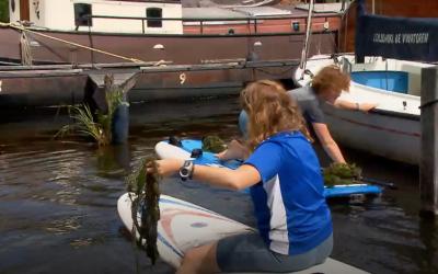 Meike en Ole verwijderen irritante waterplanten
